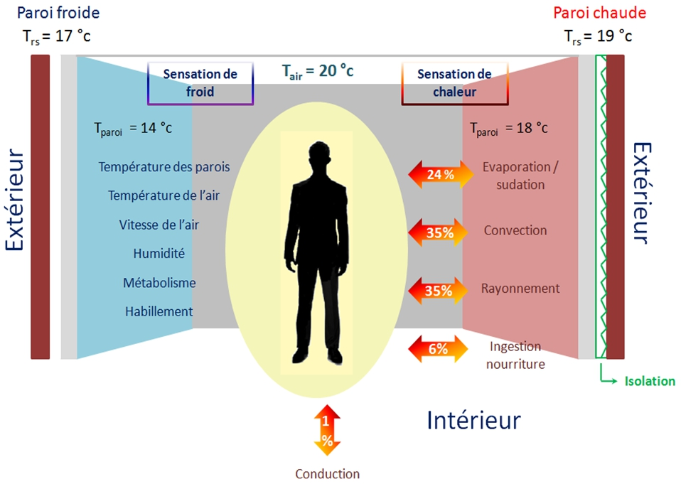 chaleur corps humain